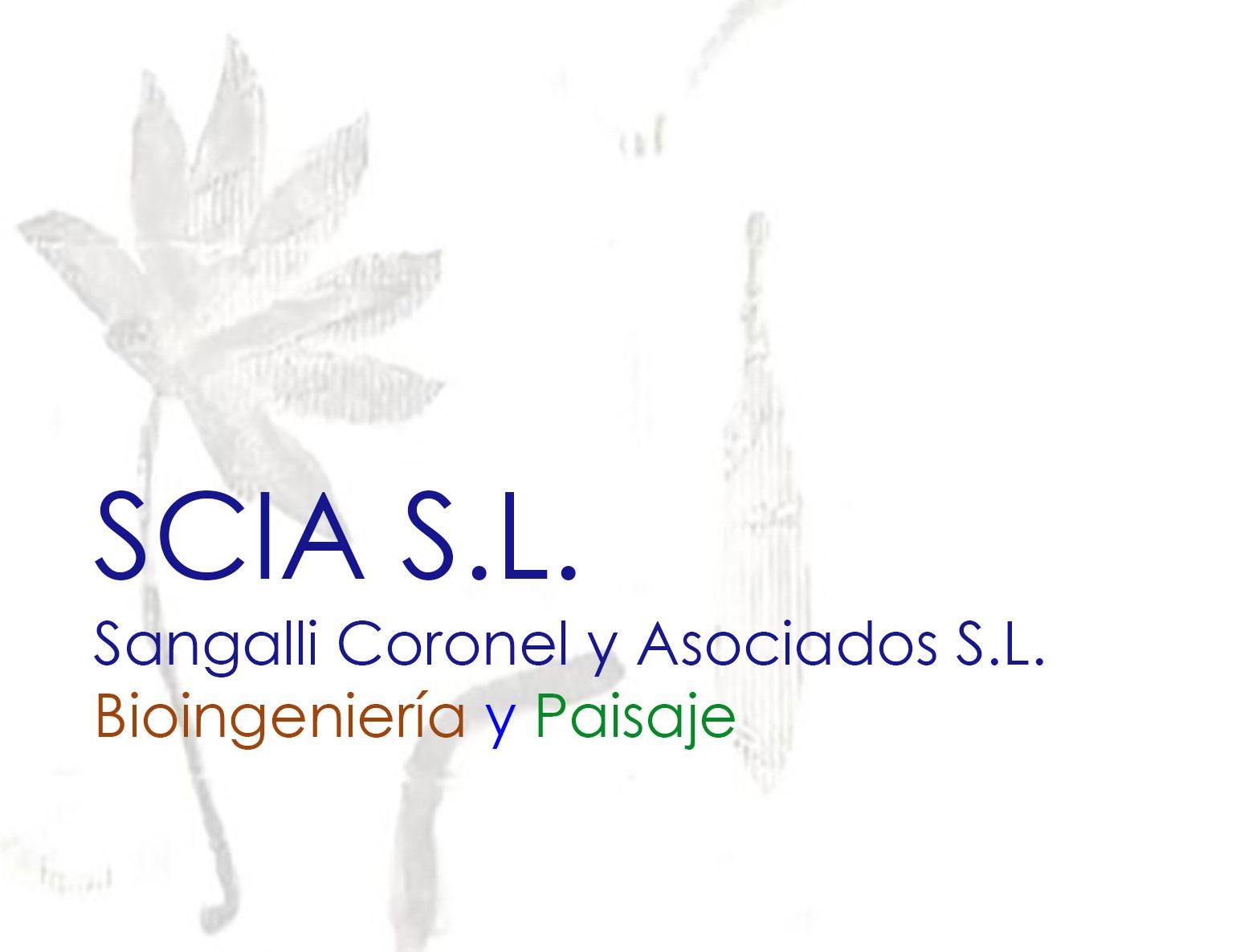 Sangalli Paisaje